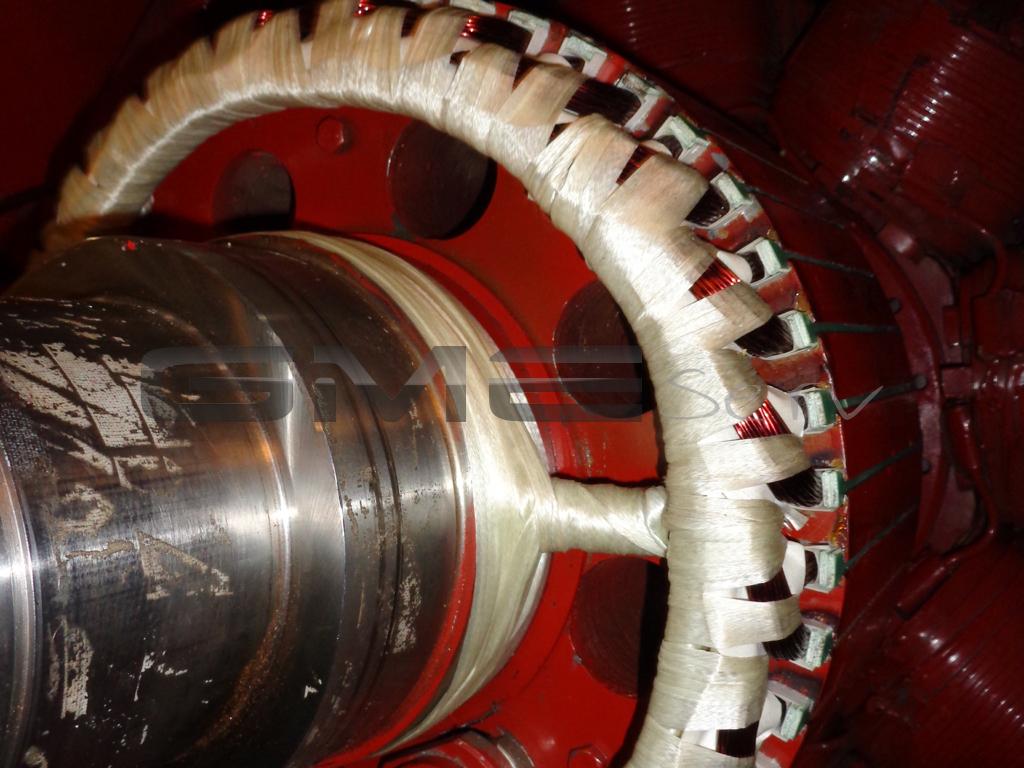 Servicebericht-Schiff-impraegnierter Errgerrotorwicklung-GME-Motor-Rotor